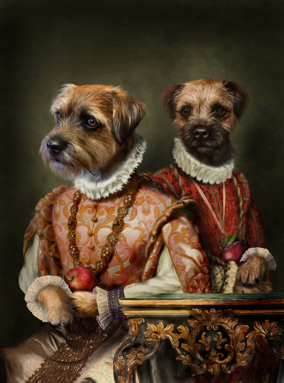 Border Terrier Dog Portrait